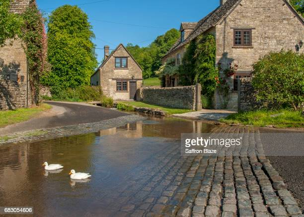 Ducks swim in a Cotswold village ford