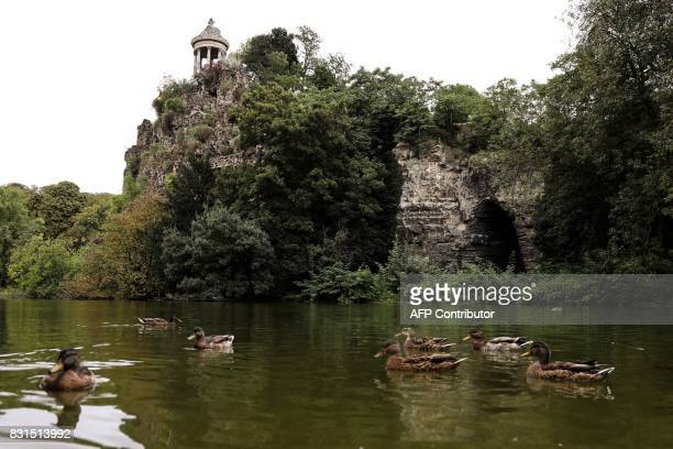 Ducks swim in a lake under the Sibylle Temple built in 1869 by French architect Gabriel Davioud atop the Belvedere Island in the ButtesChaumont Park...