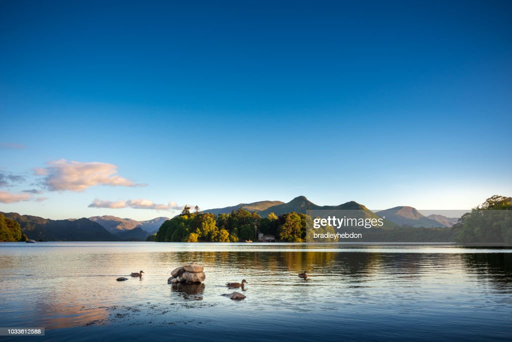 Ducks swimming on Lake Derwentwater near Keswick, England : Stock Photo