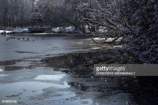 Ducks take stand on the partiallyfrozen lake located by the castle of Chamerolles near Orleans some 120 km south of Paris on February 8 2018 / AFP...