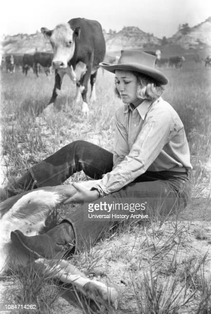 "Dude Girl ""Rassling"" a Calf, Quarter Circle U Ranch Roundup, Montana, USA, Arthur Rothstein, Farm Security Administration, June 1939."