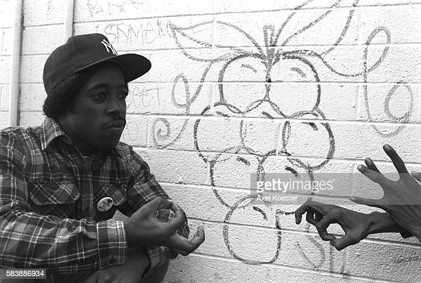 DuDog a member of Grape Street poses next to a neighborhood graffito The Grape Street Watts Crips are a mostly African American street gang based in...