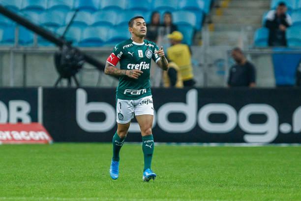 BRA: Gremio v Palmeiras - Brasileirao Series A 2019