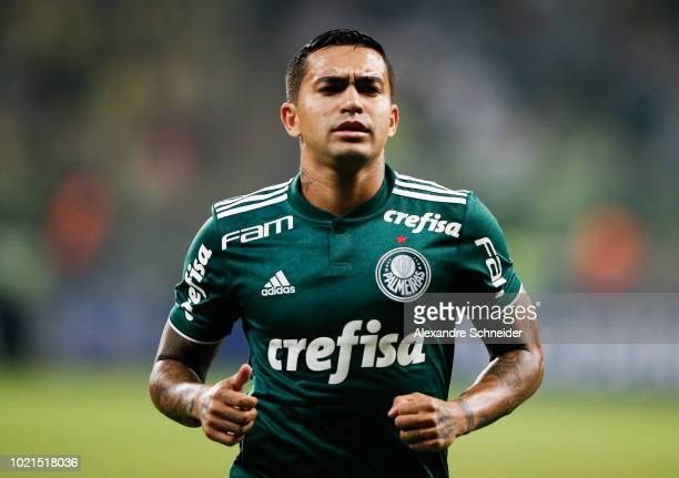 Dudu of Palmeiras in action during the match against Botafogo for the Brasileirao Series A 2018 at Allianz Parque Stadium on August 22 2018 in Sao...