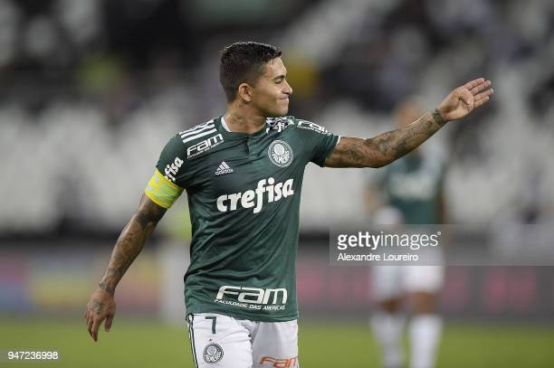 Dudu of Palmeiras reacts during the match between Botafogo and Palmeiras as part of Brasileirao Series A 2018 at Engenhao Stadium on April 16 2018 in...