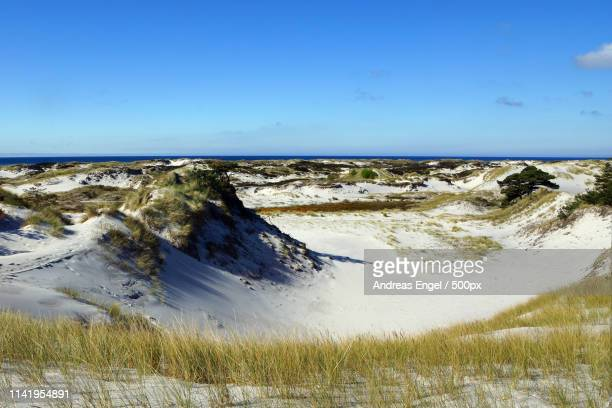 dueodde dunes - coastal feature stock pictures, royalty-free photos & images