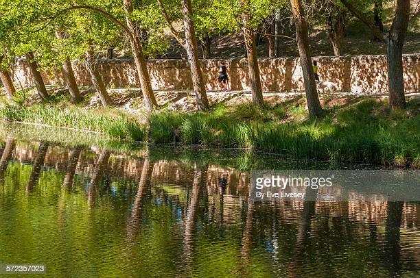 duero riverside in springtime - riverbank fotografías e imágenes de stock
