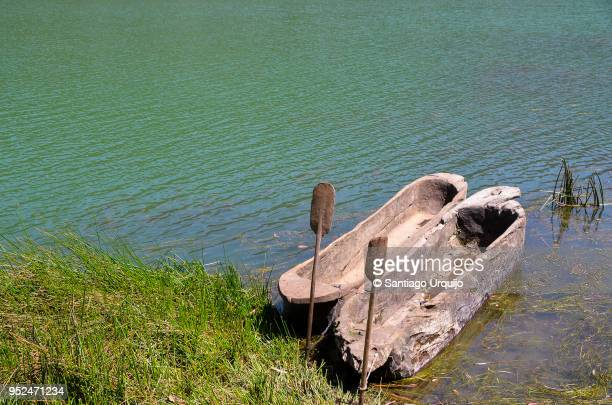 dugout canoes on lakeshore - dugout canoe stock photos and pictures