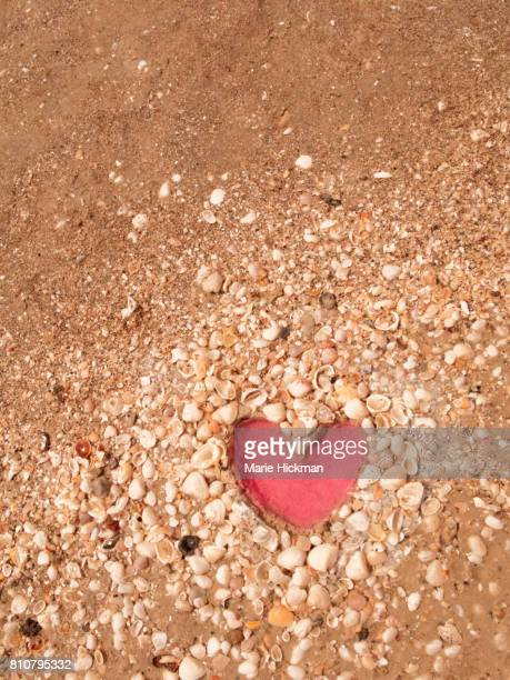 Dug-out PINK HEART imprint in shell-covered sand in Naples, Florida
