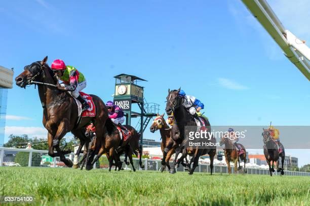Duke of Brunswick ridden by Damien Oliver wins Darren Gauci Farewell Handicap at Caulfield Racecourse on February 04 2017 in Caulfield Australia