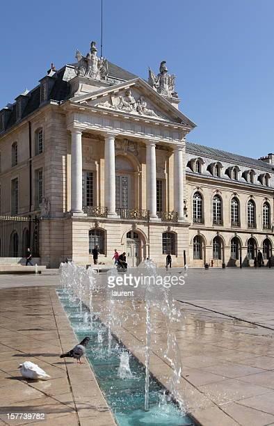 palais des ducs de bordeaux de libération square à dijon, france - dijon photos et images de collection
