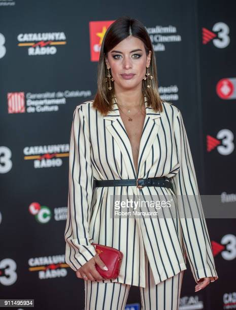 Dulceida attends the Gaudi Awards 2018 at the Forum CCIB Auditori on January 28 2018 in Barcelona Spain