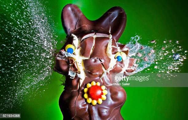 Dum Dum Bunny