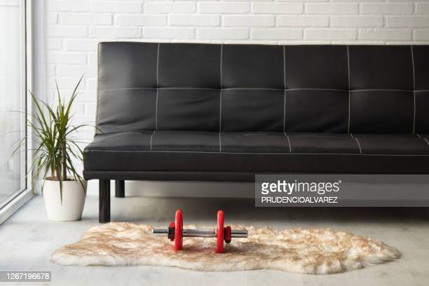 dumbbells living room at home