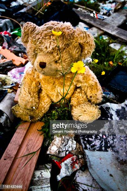 dumped teddy bear - conservative party uk stock pictures, royalty-free photos & images