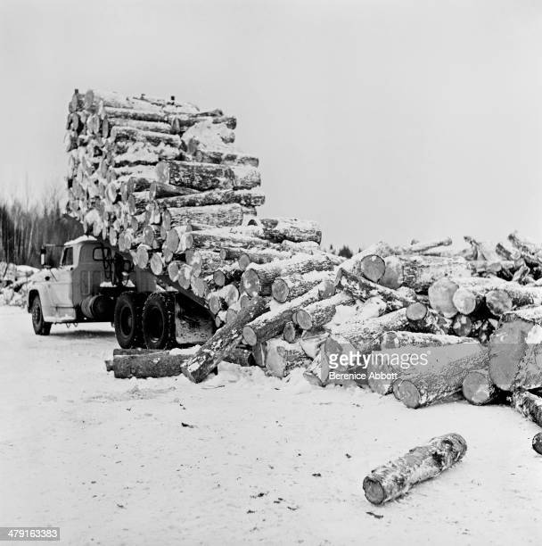 Dumping cord wood near site for a river transport United States circa 1950 Abbott took two series of logging photographs the first in the High Sierra...