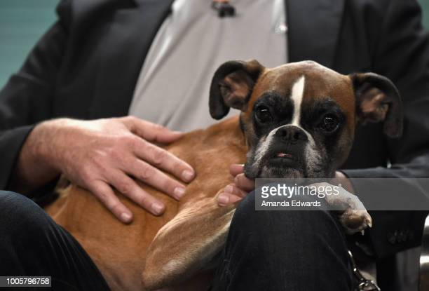 Duncan of 'Amanda to the Rescue' onstage during the Animal Planet portion of the Discovery Communications Summer TCA Event 2018 at The Beverly Hilton...