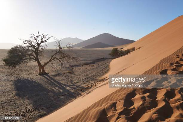 dune 47, namibia - walvis bay stock photos and pictures