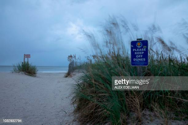 Dune grass blows in the wind as the outer bands of Hurricane Florence make landfall in Myrtle Beach, South Carolina on September 13, 2018. -...