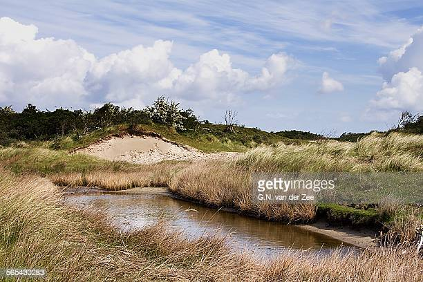 dune landscape - dunes arena stock pictures, royalty-free photos & images