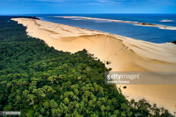 dune of pilat, arcachon, nouvelle-aquitaine, france - gironde stock pictures, royalty-free photos & images