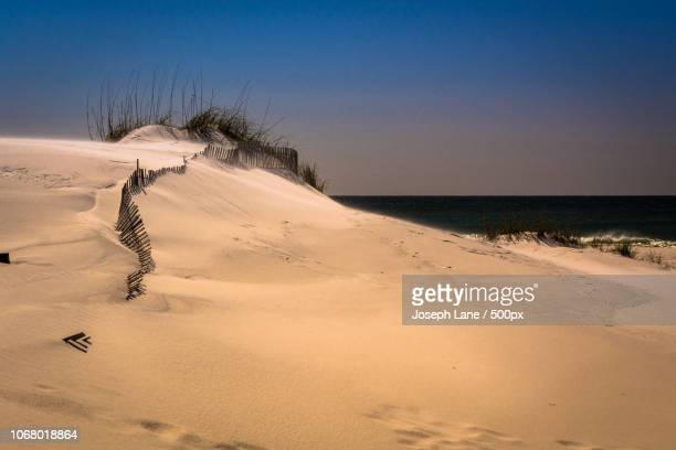 dune on beach, gulf of mexico - destin beach stock pictures, royalty-free photos & images