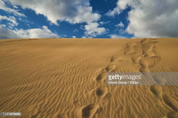 dune - グイチアン ストックフォトと画像