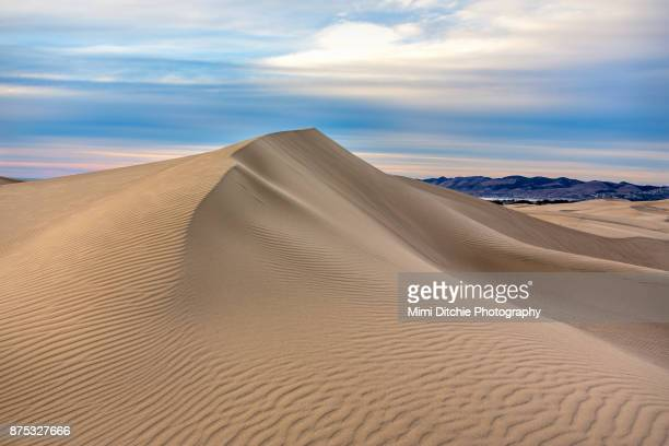 dune - pismo beach stock pictures, royalty-free photos & images