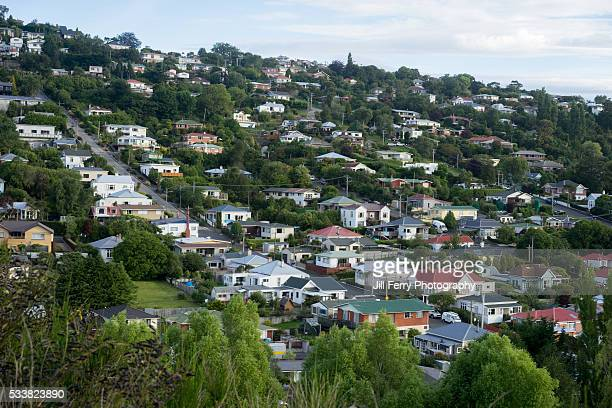 dunedin houses - dunedin new zealand stock pictures, royalty-free photos & images