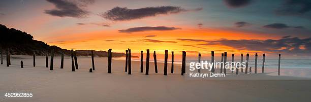 Dunedin St Clair Beach sunrise old jetty / Pier