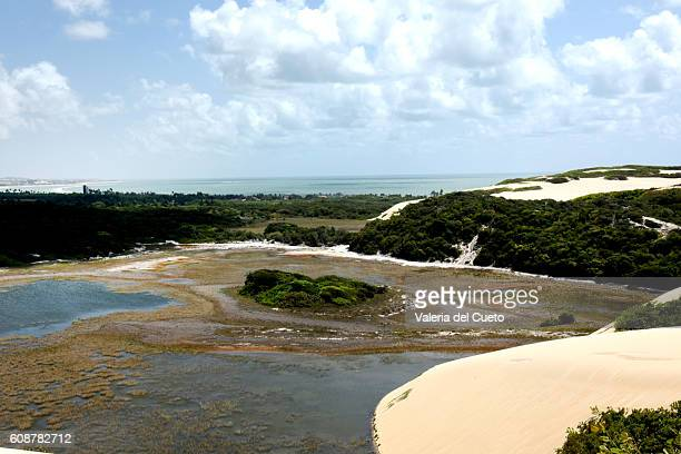 dunes and lagoon - sem fim... valéria del cueto stock pictures, royalty-free photos & images