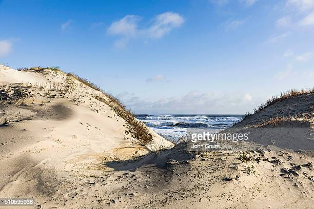Dunes and ocean at Cape Hatteras National Seashore