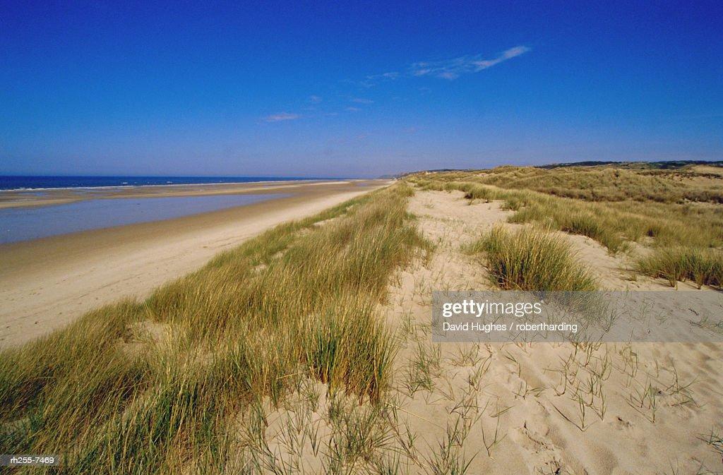 Dunes at Hardelot Plage, near Boulogne, Pas-de-Calais, France : Stockfoto