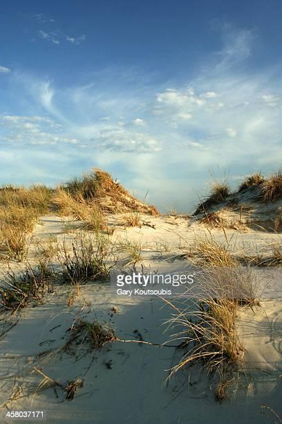 dunes at jones beach - jones beach stock-fotos und bilder