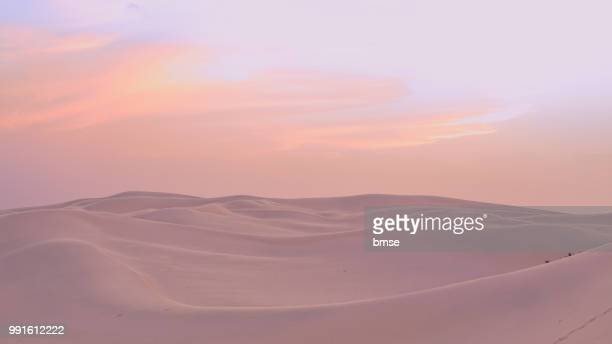 dunes at sunset - algerie photos et images de collection