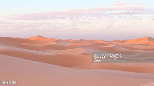 dunes at sunset - 砂漠 ストックフォトと画像