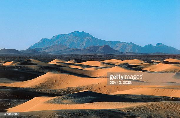 Dunes in the Chihuahua desert Mexico