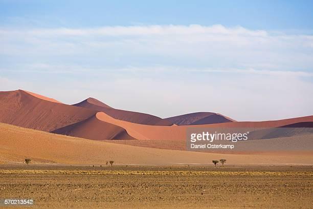 Dunes in the Namib-Naukluft National Park, Sossusvlei, Namibia, Africa