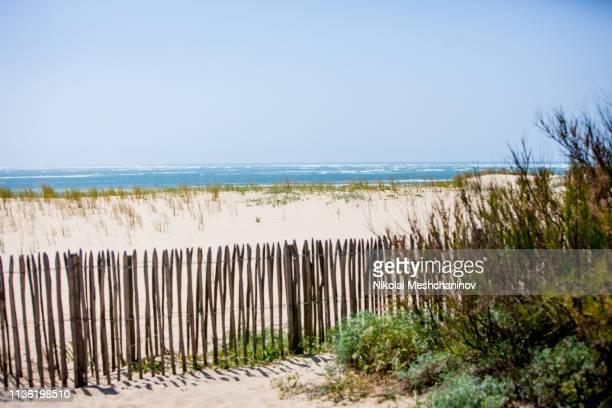 dunes of arcachon bay, france - cap ferret photos et images de collection