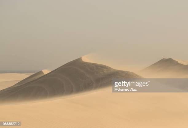 dunes of qatar - qatar stock pictures, royalty-free photos & images