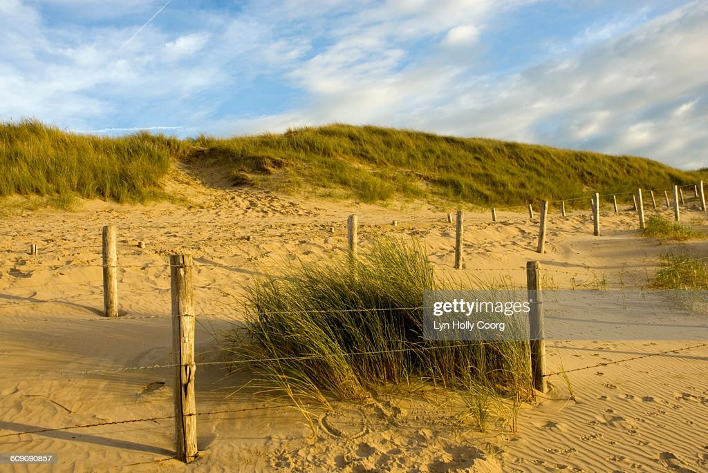 Dunes on sandy beach with fence : Stock Photo