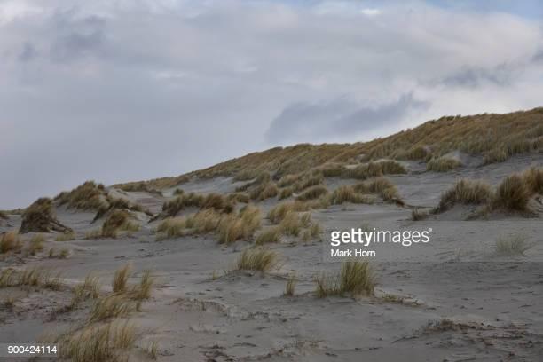 Dunes with helm grass and sky, Terschelling, West Frisian Islands, Netherlands