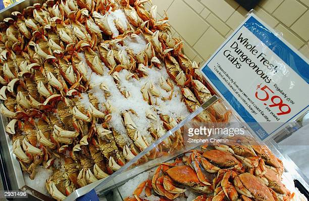 Dungeonous crabs are part of the extensive selection of seafood available as Whole Foods Market readies for its opening February 5 2004 in New York...