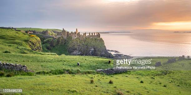 dunluce castle at sunset, northern ireland. - county antrim stock pictures, royalty-free photos & images