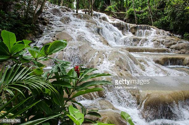 Dunn's River Falls; Ocho Rios, Jamaica