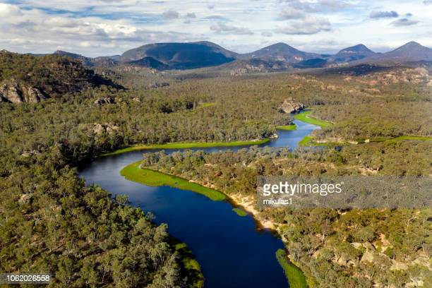 dunns swamp - new south wales stock pictures, royalty-free photos & images