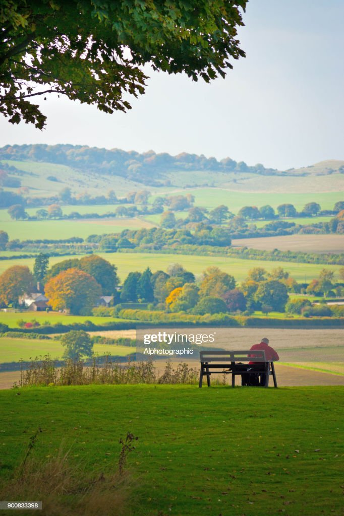 Dunstable Downs : Stock Photo