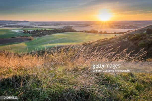 dunstable downs sunset - bedfordshire stock photos and pictures