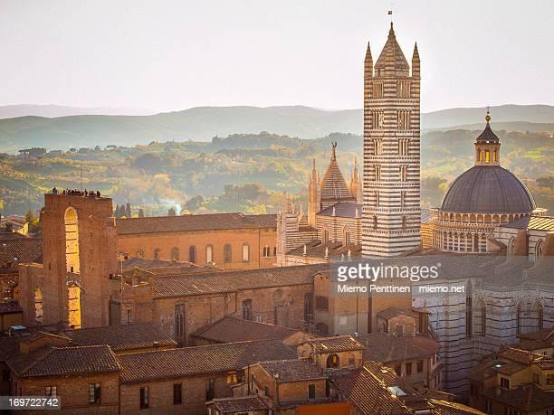 duomo di siena - siena italy stock pictures, royalty-free photos & images