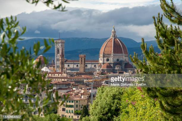 duomo framed by trees - marek stefunko stock pictures, royalty-free photos & images